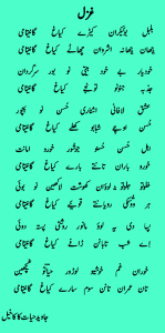 Javed Hayat Kakakhail